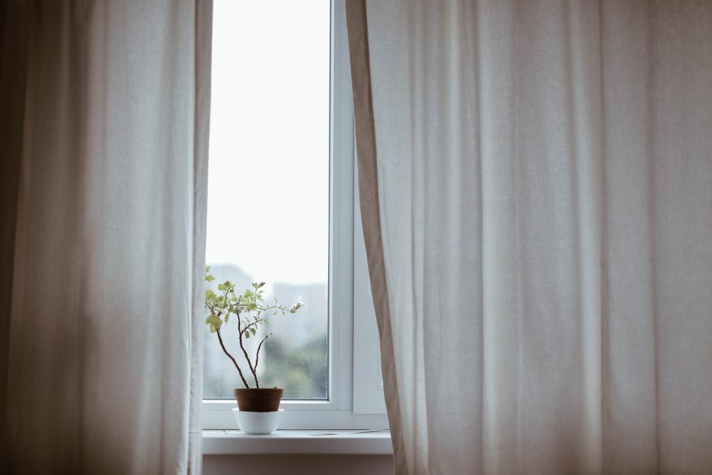 White curtains with plant on windowsill
