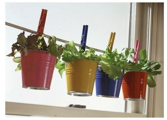 4 coloured pots pegged to a tension rod